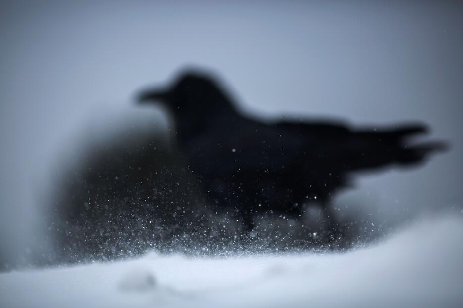 La cantidad de nieve continúa aumentando en el poblado de Mammoth Lakes,...