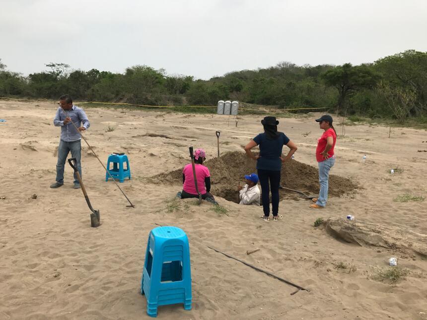 En Santa Fe, Veracruz, se han encontrado más de 250 cráneos en 125 fosas...
