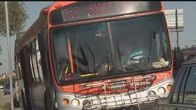 A partir de julio los pasajeros de autobuses deberán utilizar el cinturón de seguridad