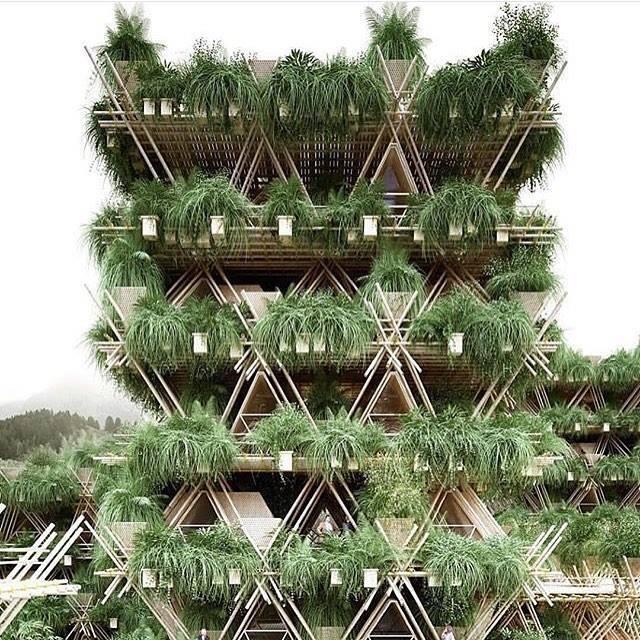 Arte verde para sanar la urbanización 12795551_10156610396825080_1125490...
