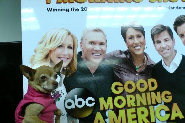 Honey llego a las instalaciones de la cadena ABC, que ya siente como una...
