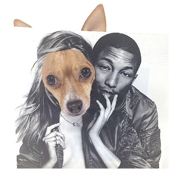 Goldie tiene fotos hasta con Pharrell Williams.