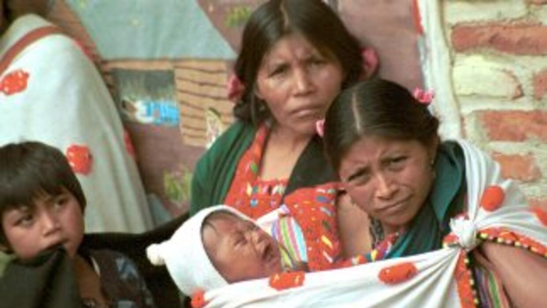 Los indígenas promovieronrecursos de apelación, amparos directos, recur...