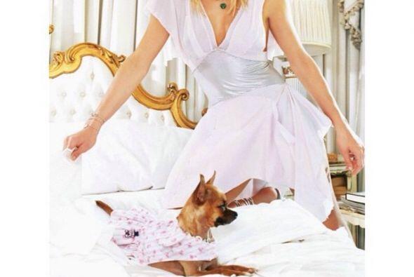 La inseparable mascota de Paris, Tinkerbell, murió por su edad avanzada.