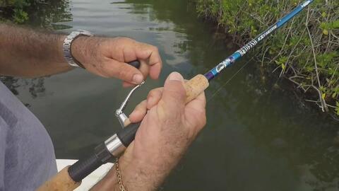 ¿Cuál es la mejor hora del día para practicar la pesca?