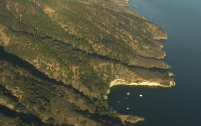 El parque nacional Channel Islands le da la oportunidad de conocer cómo...
