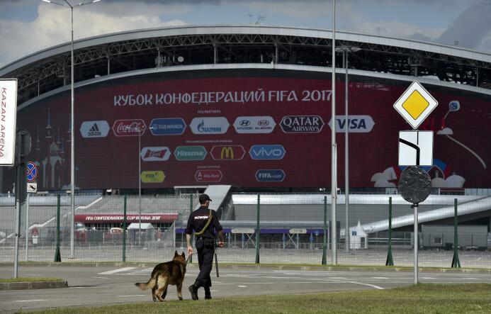 Denuncian sangrienta campaña para un Mundial sin perros callejeros getty...