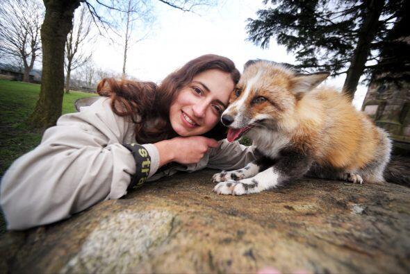 Emma tiene más de 40 animales en cautiverio. Los lleva a orfanatos, cole...