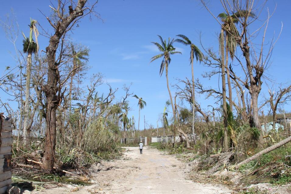 How to help Haiti? The debate over Hurricane Matthew relief effort Cappo...