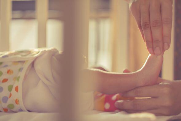 Desde los pies hasta la cabeza, los pequeñitos reciben caricias de su mamá.