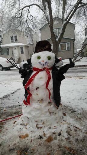 Primera nevada de la temporada Chicago