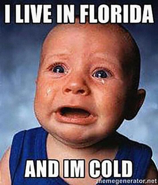 Memes Frío Miami