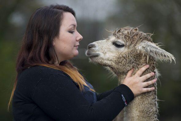 La joven de 24 años es amante de los animales.