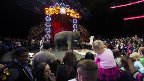 El Circo Ringling Brothers hace su última presentación en Miami