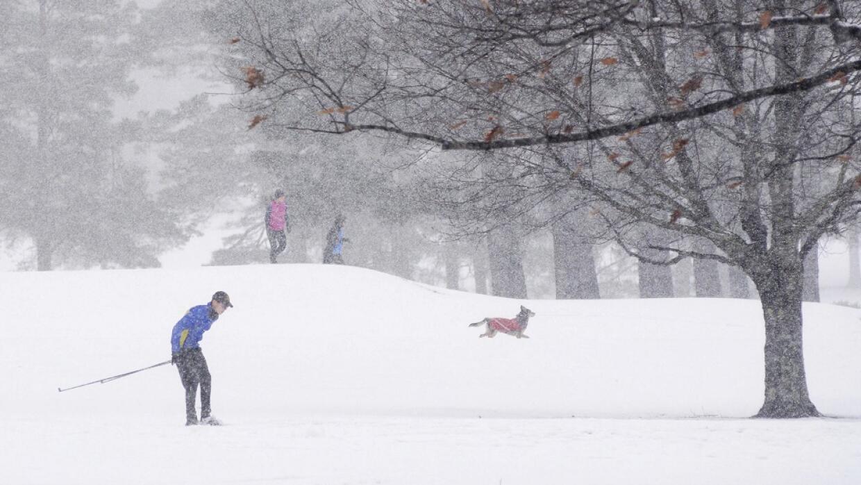 Nieve en Estados Unidos