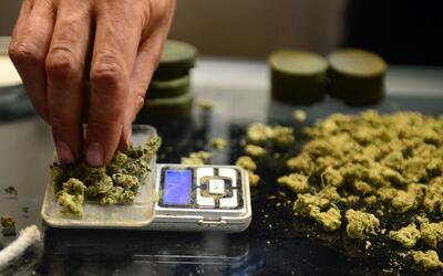 ¿Cuán costoso será el cannabis medicinal en Puerto Rico?