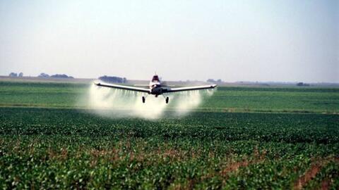Fumigación contra el zika usando Naled es casi una realidad