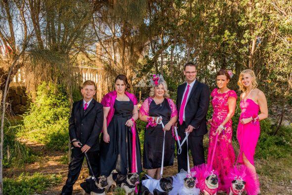 Fueron 350 invitados humanos y 60 perros los que asistieron a ver al par...