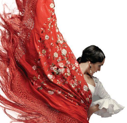 Quieres irte con nosotros al festival de flamenco de Miami ? Facil inscr...
