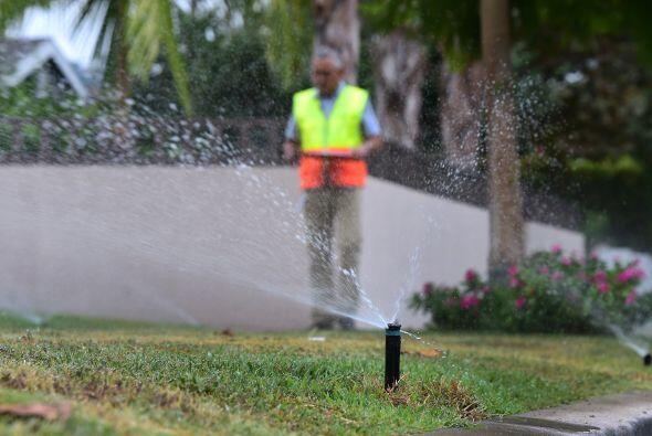 Entre las medidas se encuentra la limitación al riego de jardines a días...