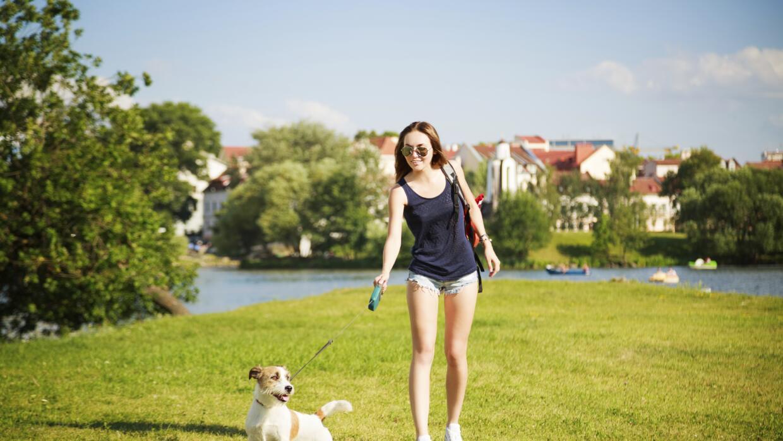 Paseo con mascota