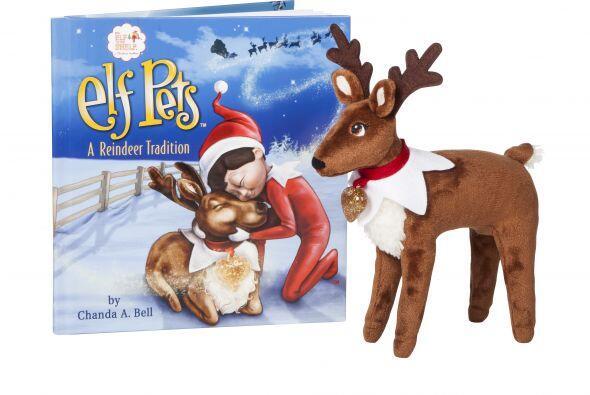 Si tu hijo es amante de los cuentos navideños, obséquiale...