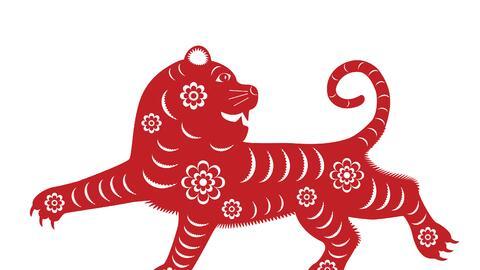 Llega el ms del Tigre acompañado de evolución económica