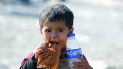Miles de personas, en su mayoríayazidíes kurdos y cristianos, huyeron h...