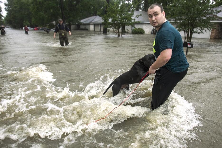 Un residente de Houston sujeta a un su perro por las calles de la ciudad