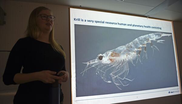 Sin krill no hay Antártica. Este es el alimento principal de focas, ball...