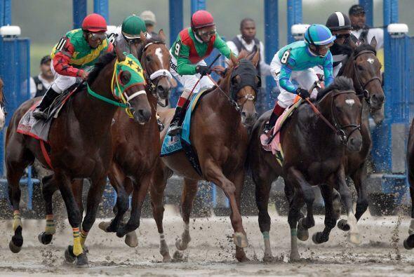 Cuando el grupo de 12 caballos se enfiló a la recta final en la competen...