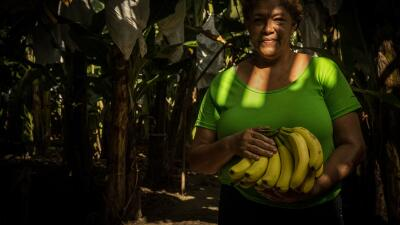 $14 for 12 hours of work: behind each banana in Honduras there is a poorly paid peasant