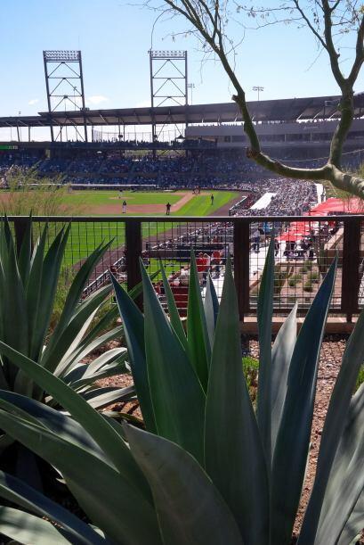 Con la participación de 15 equipos, la Liga Cactus dio inicio y decenas...