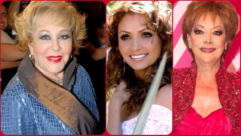 Las mejores mamás de las telenovelas y fuera de ellas