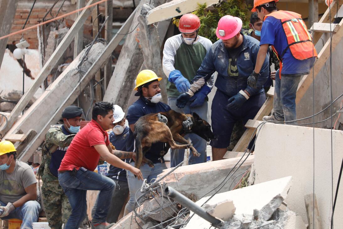 Terremoto México Rebsamen