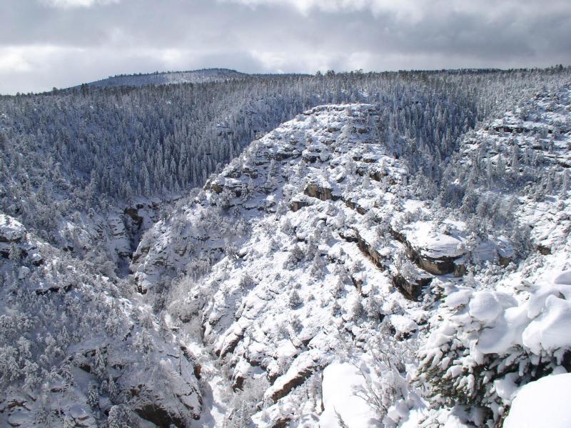 Así se ve el invierno en los parques nacionales de Estados Unidos WALNUT...