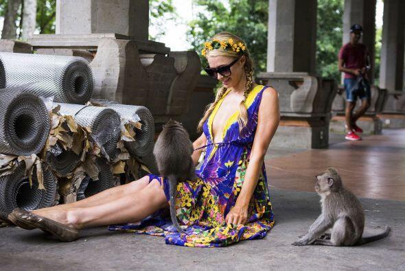 Su encuentro con la naturaleza de Bali, parece que ha impactado mucho a...