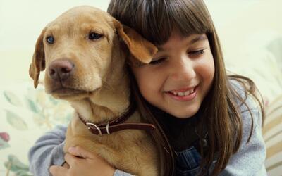 Pasear al perro también es útil para liberar tensió...
