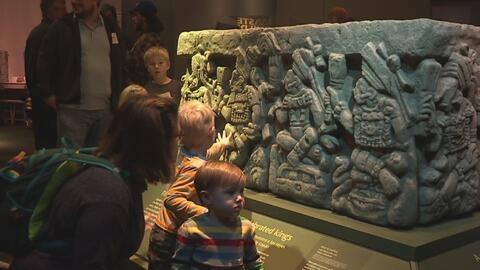 En el Museo Perot, sigue la exposición denominada Mundos Ocultos Revelad...