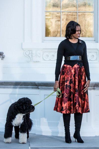 ¡Ni para pasear a su perro perro Sunny esta diva pierde el estilo! Muy g...