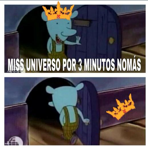 Memes Miss Universo
