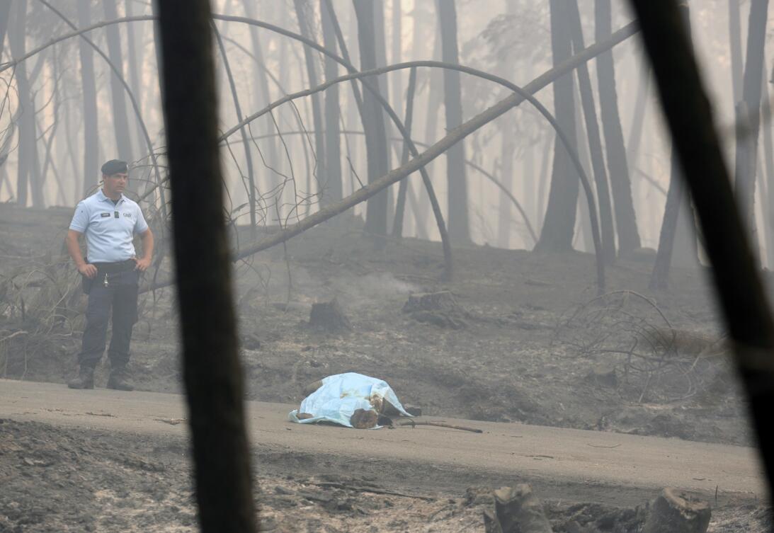 Las imágenes del descomunal incendio forestal que mató a 62 personas en...