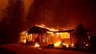 Un hombre fue salvado por un zorro y otro se enfrentó a las llamas: 5 historias de sobrevivientes de los incendios en California