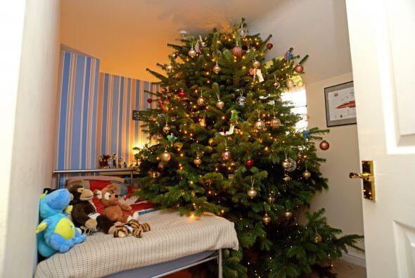 """M & S lo nombró """"el árbol más imponente de Navidad en el Reino Unido"""" al..."""