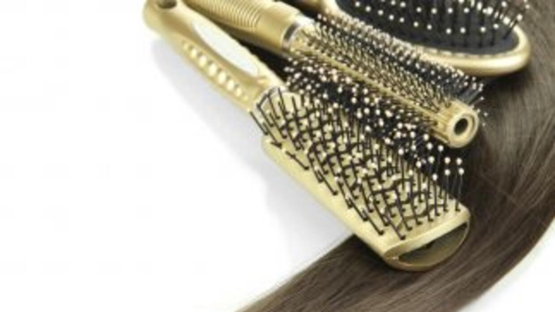 Existen diferentos tipos de cepillos con los que puedes darle diversos e...
