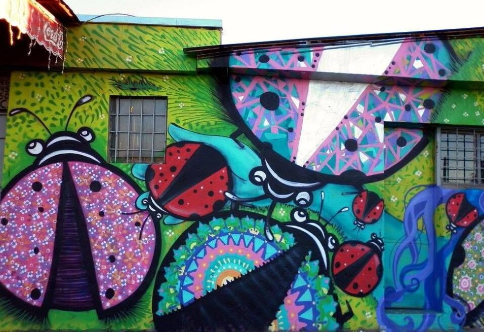 Muralistas chilenas se organizan para tomarse las calles 920934_10200954...