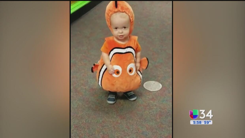 Pequeño disfrazado de 'Nemo' conquista las redes