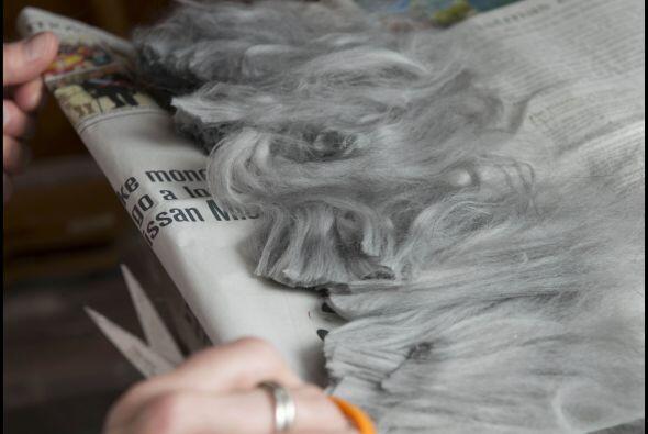 Con el suave pelaje de sus hermosos conejos.