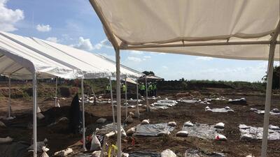 El hallazgo de 95 tumbas en un campo de Texas: probablemente era negros liberados que hacían trabajos forzados