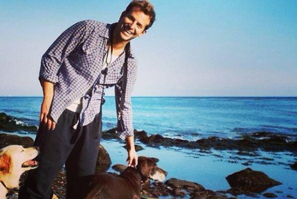 Bradley Cooper y Samson & Charlotte  Bradley aparte de guapo es un amant...